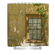 Coquina Wall Shower Curtain