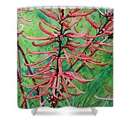 Coral Bean Flowers Shower Curtain