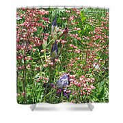 Coral Bells And Irises Shower Curtain