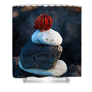 Coral Dandy Shower Curtain
