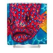 Coral Grouper Shower Curtain by Daniel Jean-Baptiste