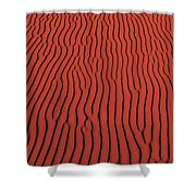 Coral Pink Sand Dunes State Park Ut Usa Shower Curtain