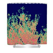 Coral Reef Abstract Shower Curtain