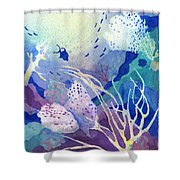 Coral Reef Dreams 4 Shower Curtain