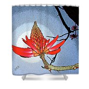 Coral Tree Shower Curtain
