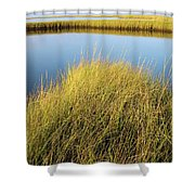 Cordgrass And Marsh, Southern Shower Curtain