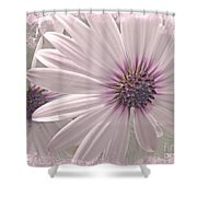 Coreopsis - Dreaming In Pink Shower Curtain