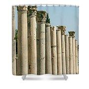 Corinthian Columns In Turkey Shower Curtain