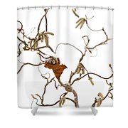 Corkscrew Shower Curtain by Anne Gilbert