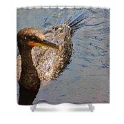 Cormorant After A Swim Shower Curtain