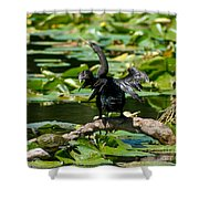 Cormorant And Turtle Shower Curtain