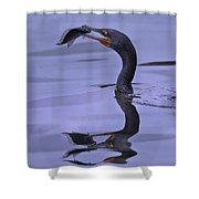 Cormorant Catch Reflection Beauty Shower Curtain