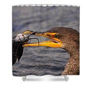 Cormorant Catching Catfish Shower Curtain