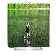 Cormorant Chilling Shower Curtain