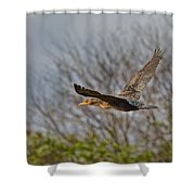Cormorant On Wings Shower Curtain