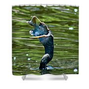 Cormorant With Catch Shower Curtain