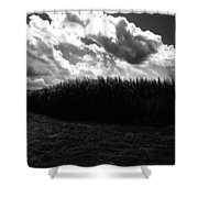 Corn Maze 03bw Shower Curtain