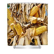 Corn Shock - Sign Of Autumn Shower Curtain