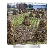 Corn Shocks Amish Field Shower Curtain