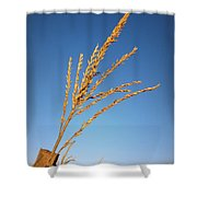 Corn Tassel Shower Curtain