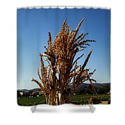 Corn Top Shower Curtain