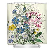 Cornflower Shower Curtain