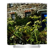 Cornish Cow Parsley  Shower Curtain