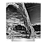 Corona In Black And White Shower Curtain