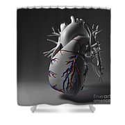 Coronary Vessels Shower Curtain