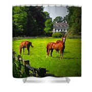 Corralled Horses - Featured In And Lets All Participate And Abc Groups Shower Curtain