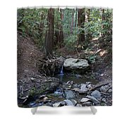 Corte Madera Creek On Mt. Tam In 2008 Shower Curtain