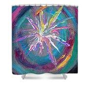 Cosmic Activity 11  Shower Curtain