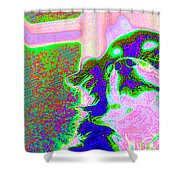 Cosmic Consciousness Shower Curtain