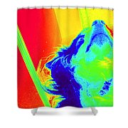 Cosmic Consciousness Too Shower Curtain