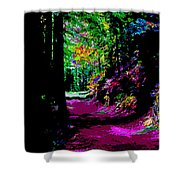 Cosmic Energy Of A Redwood Forest On Mt Tamalpais Shower Curtain