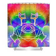 Cosmic Spiral Ascension 17 Shower Curtain