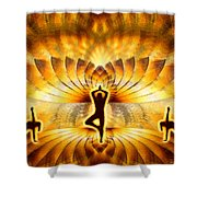 Cosmic Spiral Ascension 23 Shower Curtain