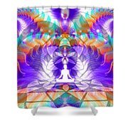 Cosmic Spiral Ascension 61 Shower Curtain