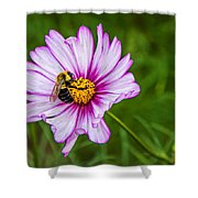 Cosmos 2 Shower Curtain