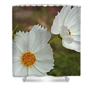 Cosmos Family Shower Curtain