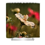 Cosmos In The Rain Shower Curtain