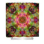 Cosmos Pink Sun Diamond Mandala Shower Curtain