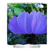 Cosmos Side Shower Curtain