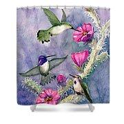 Costa Hummingbird Family Shower Curtain