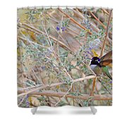 Costas Country Shower Curtain