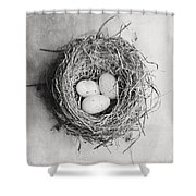 Cottage Bird's Nest In Black And White Shower Curtain