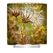 Cotten Grass Shower Curtain