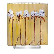 Cotton Chorus Line Shower Curtain