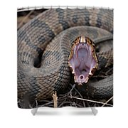 Cotton Mouth Shower Curtain