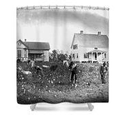 Cotton Picking, 1902 Shower Curtain